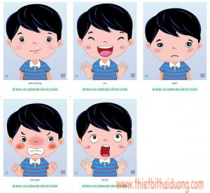 Bộ tranh các gương mặt cảm xúc cơ bản